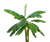 banana-tree-small.png